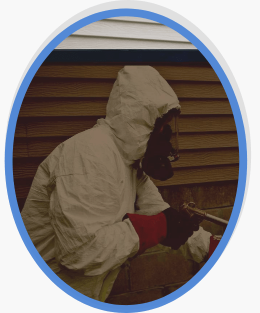 Pest Control Mornington Peninsula